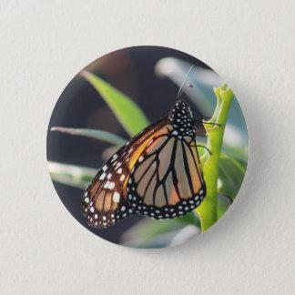 Badge Rond 5 Cm Bouton de papillon de monarque