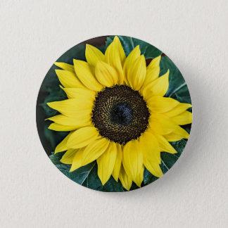 Badge Rond 5 Cm bouton de tournesol