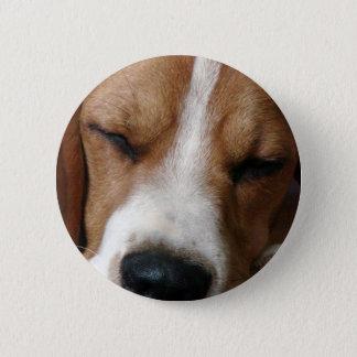 Badge Rond 5 Cm Bouton rond de beagle de sommeil