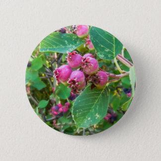 Badge Rond 5 Cm Bouton rond de pouce de ¼ de Saskatoons 2