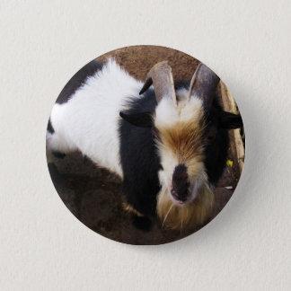 Badge Rond 5 Cm Chèvre de Billy