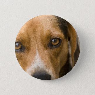 Badge Rond 5 Cm Chien de chasse loyal de chien de beagle