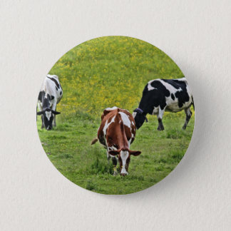 Badge Rond 5 Cm Cows_0068