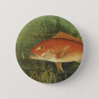 Badge Rond 5 Cm Espèce marine vintage, poisson de vivaneau dans