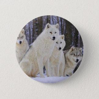 Badge Rond 5 Cm Famille de loup