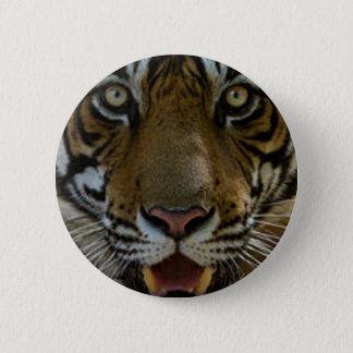 Badge Rond 5 Cm Fin de visage de tigre