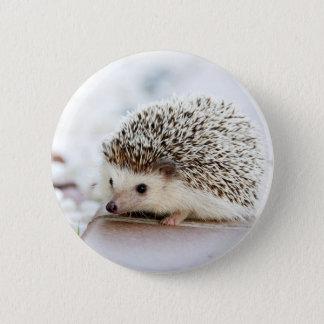 Badge Rond 5 Cm Hérisson mignon de bébé