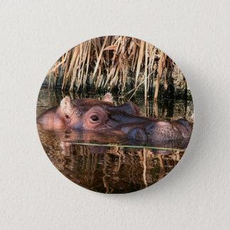 Badge Rond 5 Cm Hippopotame africain dans l'eau