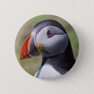Badge Rond 5 Cm Insigne de portrait de macareux