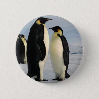 Badge Rond 5 Cm le pingouin-dunette-de-externe-espace