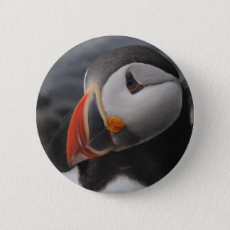 Badge Rond 5 Cm Macareux
