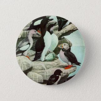 Badge Rond 5 Cm Macareux vintages, oiseau aquatique, animaux