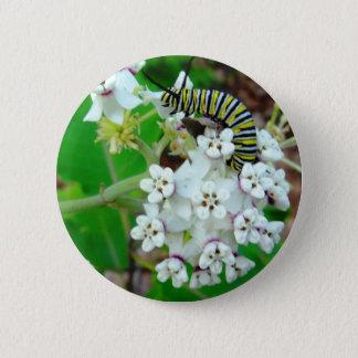Badge Rond 5 Cm Milkweed et monarque