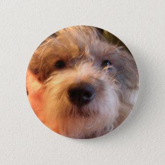 Badge Rond 5 Cm mon chien einstein