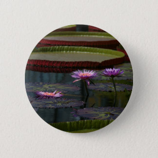 Badge Rond 5 Cm Nénuphars pourpres Lotus
