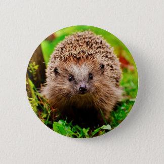 Badge Rond 5 Cm Petit hérisson mignon dans la forêt