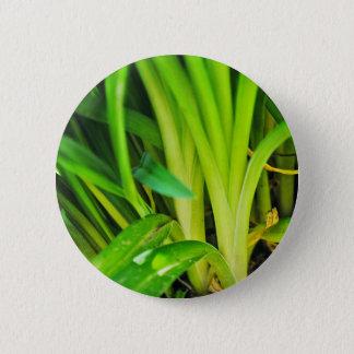 Badge Rond 5 Cm Plantes intéressants