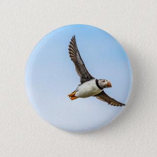 Badge Rond 5 Cm Plume de mouche de faune de vol de mer d'oiseau de
