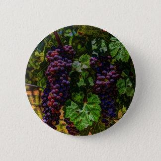Badge Rond 5 Cm Raisins ensoleillés de vignoble de la Toscane de