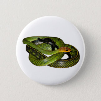 Badge Rond 5 Cm Ratsnake Noir-mis en marge ou serpent de rat vert