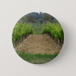 Badge Rond 5 Cm Vignoble au printemps. La Toscane, Italie