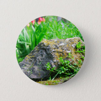 Badge Rond 5 Cm Vue en gros plan d'une pelouse décorative en parc