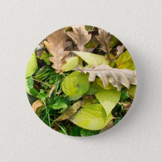 Badge Rond 5 Cm Vue en gros plan sur le feuille d'automne tombé
