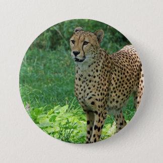 Badge Rond 7,6 Cm Guépard impressionnant