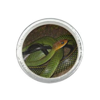 Bague Ratsnake Noir-mis en marge ou serpent de rat vert