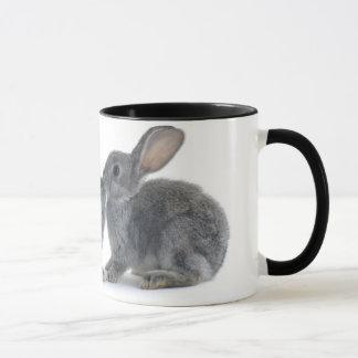 Baiser de lapin mug