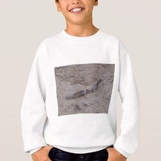 Baisers des écureuils sweatshirt