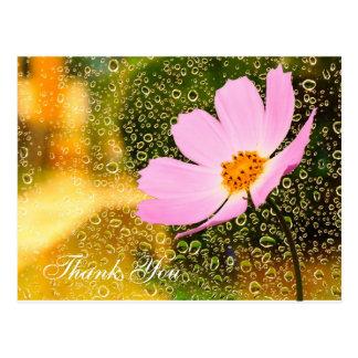 Baisse de pluie avec la carte postale de fleur de