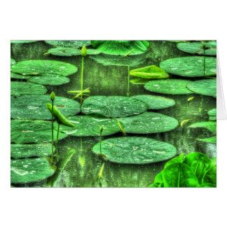Baisses de miroir sur la carte de Lotus