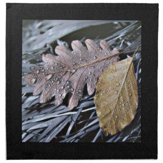 Baisses sur le feuille d'automne - serviette de