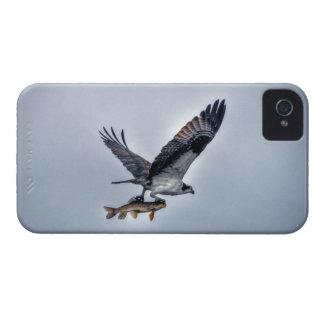 Balbuzard de vol avec la photo de HDR de poissons Coque iPhone 4 Case-Mate