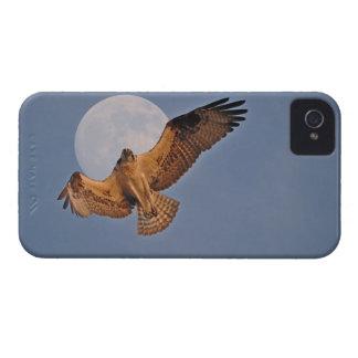 Balbuzard sauvage et conception superbe de photo coques Case-Mate iPhone 4