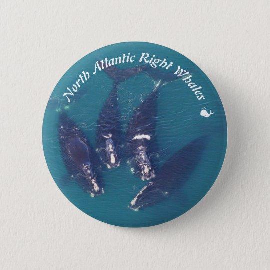 Baleines droites d'Atlantique nord par RoseWrites Badge Rond 5 Cm