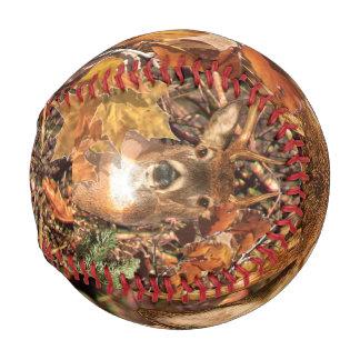 Balle De Baseball Mâle dans des cerfs communs de queue blanche de