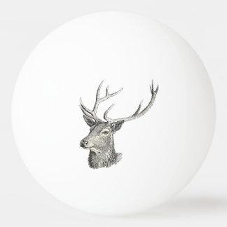 Balle Tennis De Table Tête de mâle de cerfs communs avec le dessin
