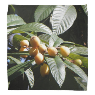 Bandana ANTIQUE de LOQUATS de VILLE