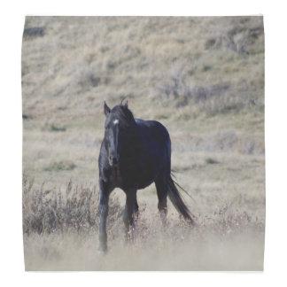 Bandana de cheval