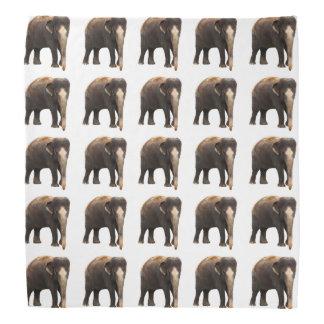 Bandana Éléphants