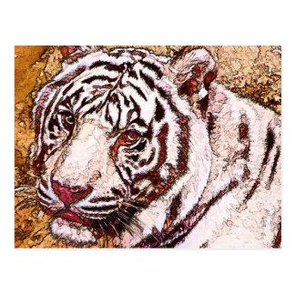 Bande dessinée blanche de tigre carte postale