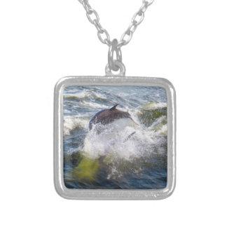 Bateau de suite de dauphins collier