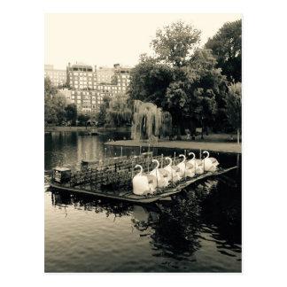 Bateaux de cygne de Boston en noir et blanc Cartes Postales