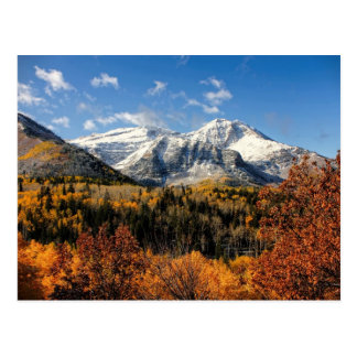 Bâti Timpanogos en montagnes de l'Utah d'automne Carte Postale
