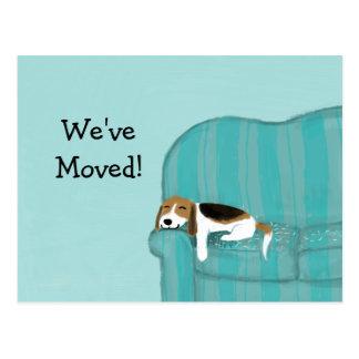 Beagle heureux de divan avec la nouvelle adresse carte postale