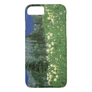 Beargrass au lac Eunice, le mont Rainier NP, WA, Coque iPhone 8/7