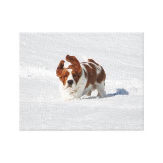 Beau Basset Hound dans la neige sur la toile