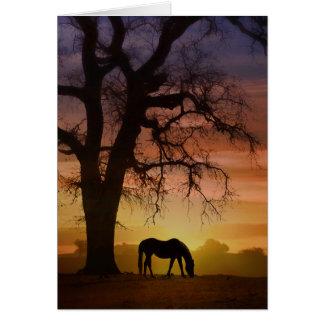 Beau cheval dans l'anniversaire du sud-ouest de carte